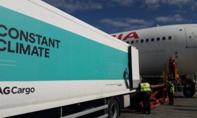 Iberia e IAG Cargo han gestionado más de un millón de vacunas a través del hub de Madrid